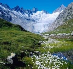 Paisaje suizo alpino