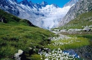 Clima de Suiza
